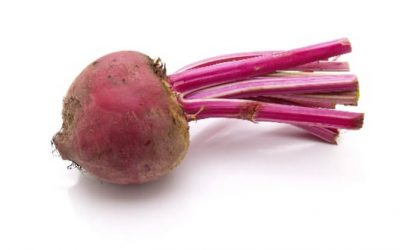 The Power of Beetroot